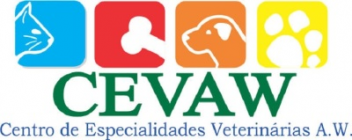 Oftalmologista de Gatos Local Pacaembu - Oftalmologista Cachorro - Cevaw